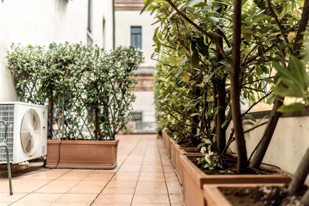 Large terrace with plants - Accademia Terrazza Apartment