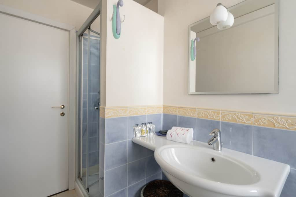 Left view of the luminous large bathroom with shower - Ca' Coriandolo Apartment