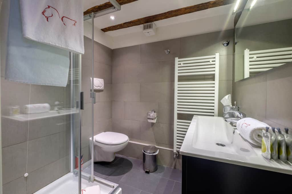 Small bathroom with shower and modern furnishing - The Lion's 5 Apartment